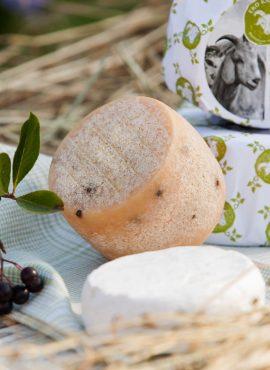 Тверді сири з козиного молока | Еко Карпати
