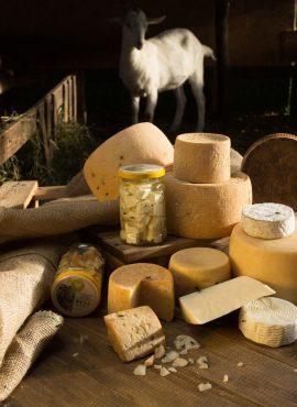 Сири з козиного молока | Еко Карпати